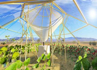 """""""Dew- Colector"""", uma solução para ajudar agricultores que tem sido atingidos pela escassez de água. Confira!"""