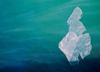 O número de sacos de plásticos encontrados nas praias do Reino Unido caiu quase pela metade. Como se deu isso? Confira!