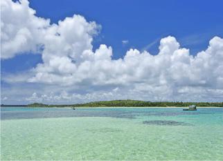 A Ilha de Boipeba, na Bahia, é um desses paraísos que desejamos em nossos sonhos. Sem som de carros, inserida no Corredor Central da Mata Atlântica, restingas, manguesais, coqueirais, recifes que formam piscinas naturais, e 20 km de praias. Confira!