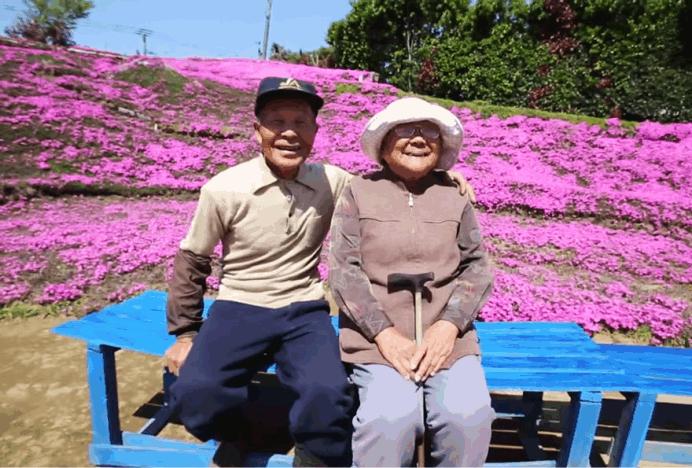 casal flores1