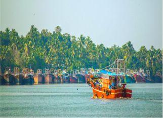 Como uma pequena aldeia de pescadores na Índia, resolveu o problema de plástico nas suas redes de pesca, contribuindo para a limpeza dos oceanos  e... Confira!
