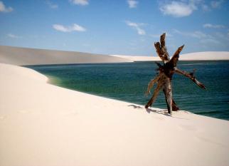 No Delta do rio Parnaíba, no município de Araioses-MA - a Ilha dos Poldros. Confira!