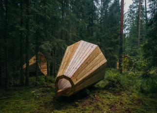 Megafones gigantes para amplificar o som da floresta. Confira!