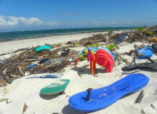 """Projeto  """" OCEAN SOLE"""", traz  uma solução  divertido para a poluição dos oceanos, combate  a pobreza e alerta  para as ameaças do lixo marinho. Confira!"""