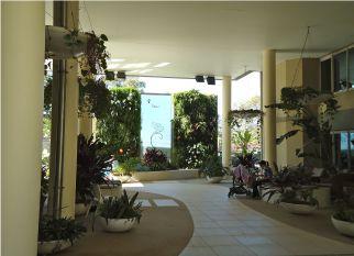 Peter Fudge projetou, instalou e mantém esse espaço verde em um hospital em North Sydney (Austrália). Confira!