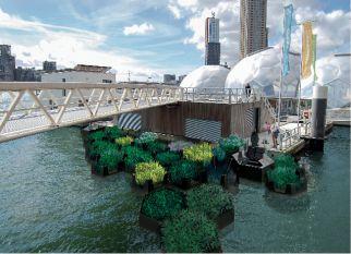 O Projeto Recycled Park, no porto de Roterdã, contribui para impedir que uma grande quantidade de plástico vá parar nos oceanos, além de tornar a cidade mais verde. Confira!