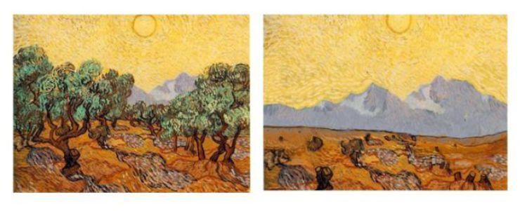 Arte e desmatamento