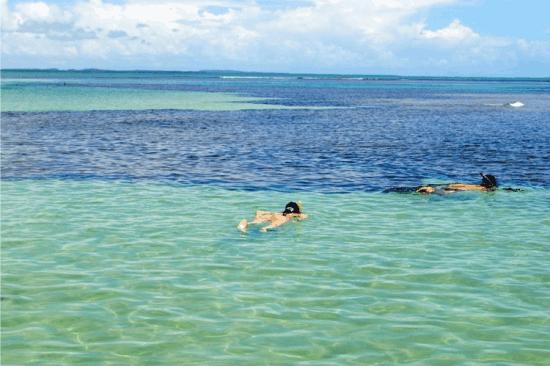Snorkel nas piscinas naturais da Praia de Moreré