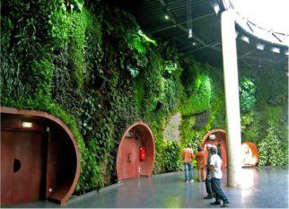 Os incríveis jardins verticais do botânico francês Patrick Blanc. Confira!