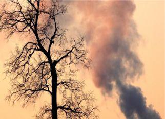 Mais uma na conta da poluição – Um estudo recente constatou que a poluição do ar, causa redução da inteligência. Confira!