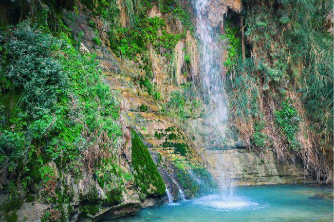 Ein Gedi (Israel), é uma das atrações naturais mais populares em Israel. É certamente um dos oásis mais antigos da história. Arqueólogos encontraram artefatos em cavernas perto de Ein Gedi que datam dos tempos neolíticos. Agora, é o centro de uma reserva natural que foi formada em 1971, limitado pelo deserto da Judéia e pelo Mar Morto. Foto: vvvita/Shutterstock)