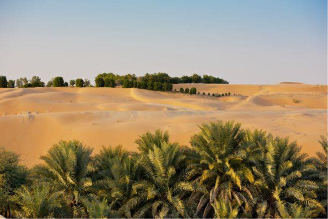 Liwa Oasis, fica  em Abu Dhabi,  Emirados Árabes Unidos e na Arábia Saudita.É o maior deserto de areia contínua do mundo. Liwa é a última parada antes de entrar neste deserto de areia sem fim. Foto: dvoevnore/Shutterstock