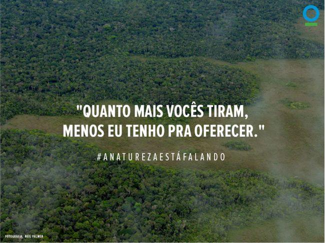 amazonia final site
