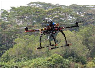 Start up britânica usa drones para replantar florestas. Confira!