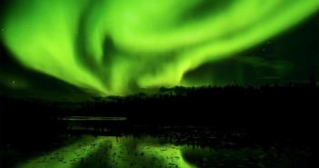 horta boreal 1